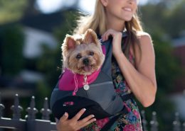 a-girl-carrying-a-dog-with-crazypaws-backpack